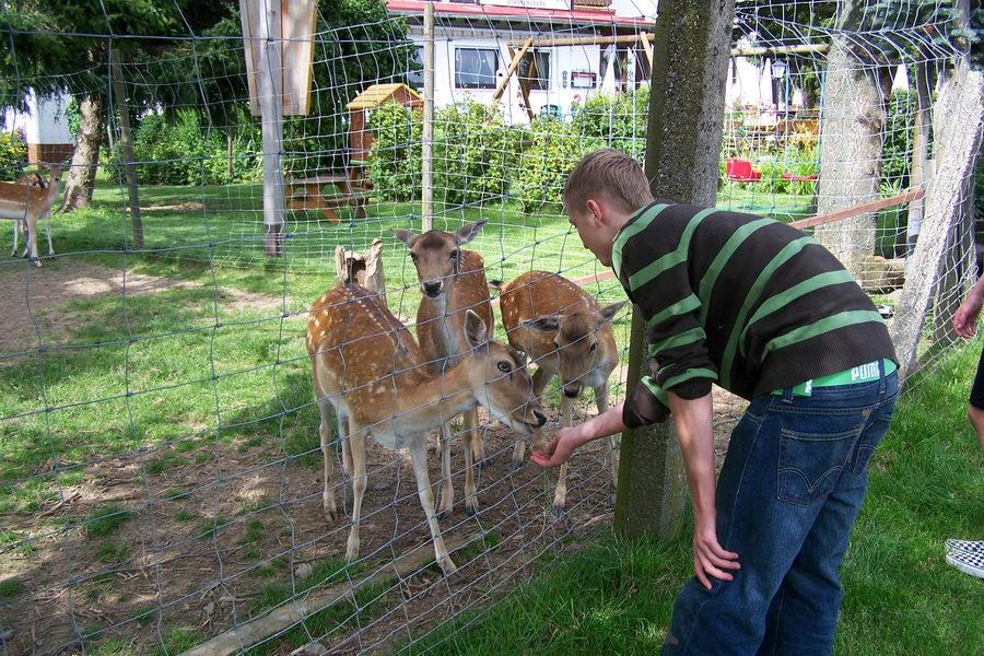 13.7.2007: Ausflug nach Hippelsbach