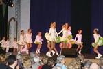 27.1.2008: Damen- und Herrnsitzung der 1. Griesheimer Carneval Gesellschaft